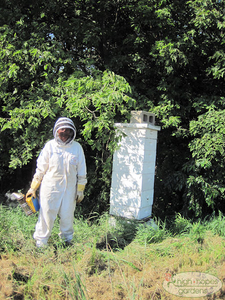 beekeeper next to hive boxes
