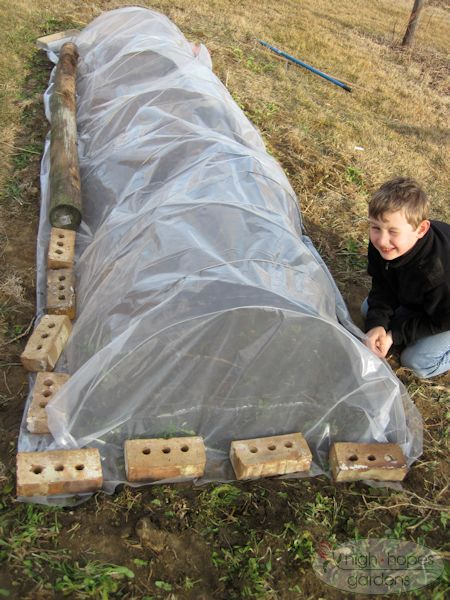 easy cold frame